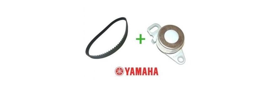 Kit distribuzione fuoribordo Yamaha
